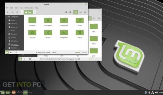 Linux Mint direct link Download