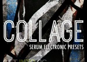 ModeAudio – Collage – Serum of Electronic the Presets (SERUM, WAV) Free Download